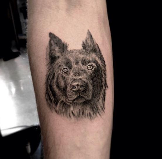 tattoodog