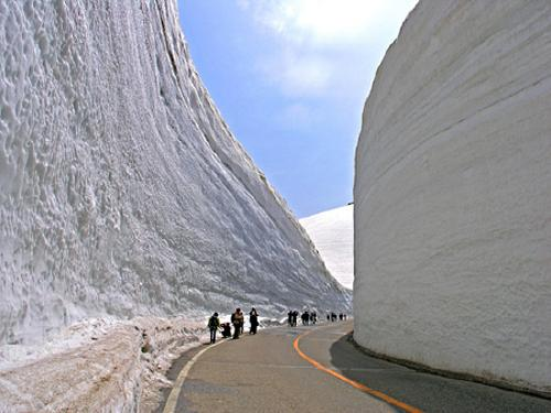 japanese tourists dwarfed by snow drift