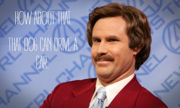 HOW-ABOUT-THAT-RON-BURGUNDY
