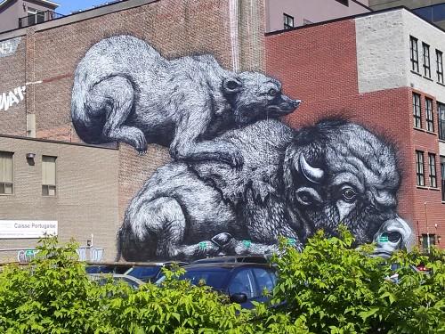 streetart21