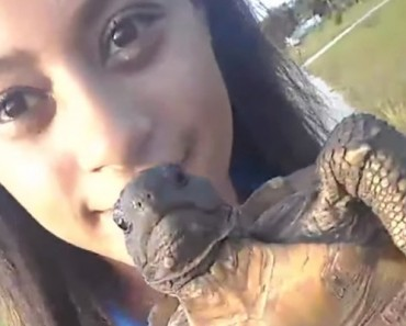 Girl Tries To Save A Turtle Ends Up Drowning A Tortoise