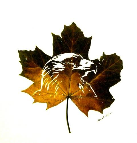 Omid Asadi leaf art-06