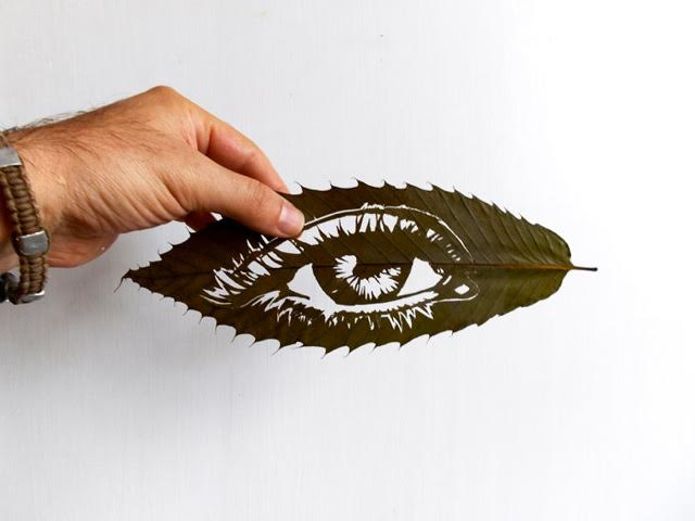 Omid Asadi leaf art-07