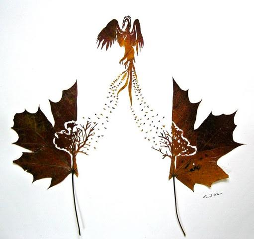 Omid Asadi leaf art-10