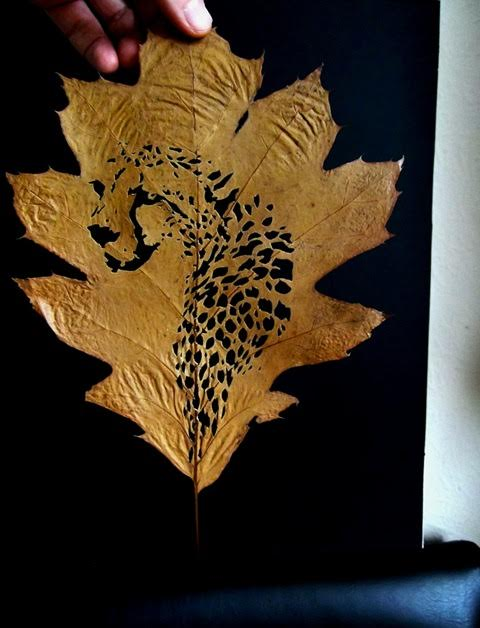 Omid Asadi leaf art-12