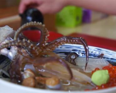 odori don live octopus