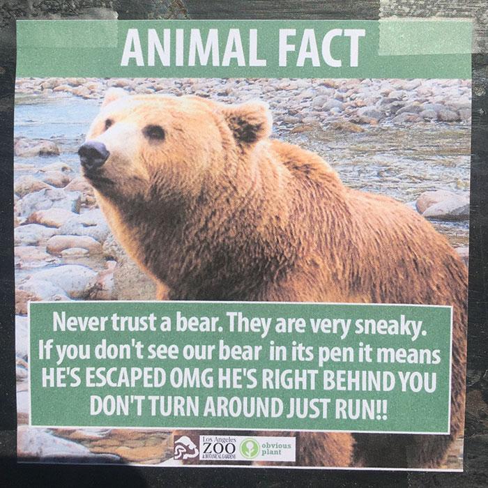 la zoo 04